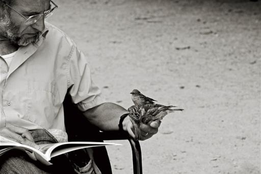 Homme aux oiseaux Palais Royal