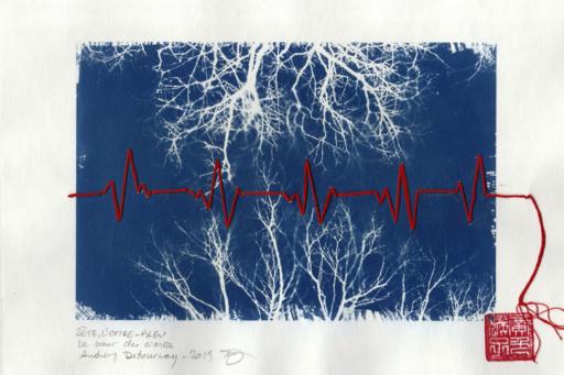 le coeur des cimes v2